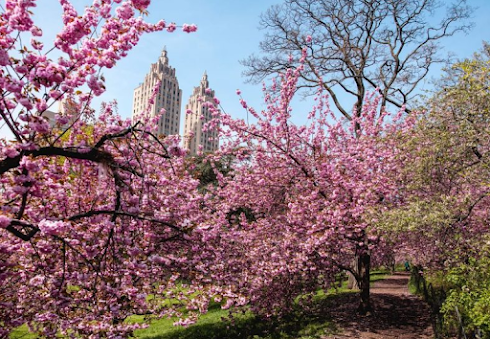 Best Time To Visit New York