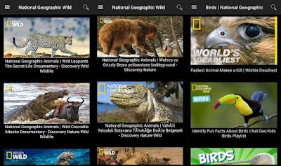 تطبيق National Geographic للأندرويد, تطبيق National Geographic مدفوع للأندرويد, تطبيق ناشيونال جيوغرافيك, تطبيق National Geographic مهكر للأندرويد, تطبيق National Geographic كامل للأندرويد, تطبيق National Geographic مكرك, تطبيق National Geographic عضوية فيب