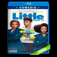 Pequeña… otra vez (2019) BRRip 1080p Audio Dual Latino-Ingles
