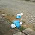Moradores reclamam da demora na coleta de lixo nos bairros