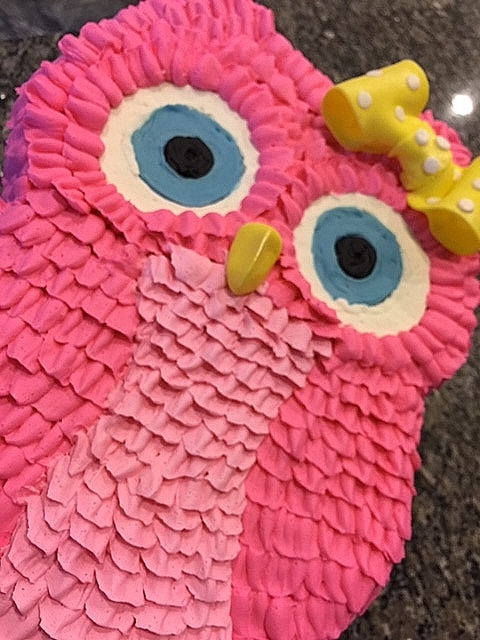 Strange My Sweet Favorites Owl Birthday Cake For A Girl Funny Birthday Cards Online Elaedamsfinfo