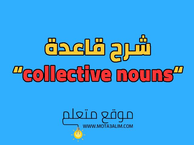شرح collective nouns