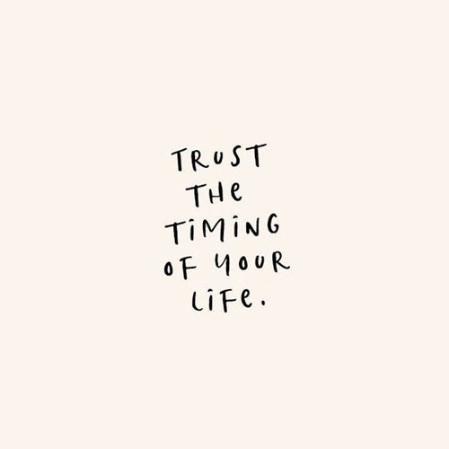 30 Inspirational Quotes to Motivate You to Be Successful. Positive VIbes & Motivational Quotes via thenaturalside.com | trust the timing of your life | #quotes #success #inspiration