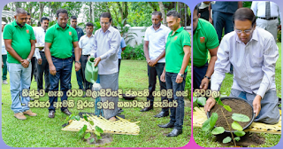 President Maithri goes planting seedlings when the whole country is awaiting the verdict -- Rumour about asking for environment minister portfolio