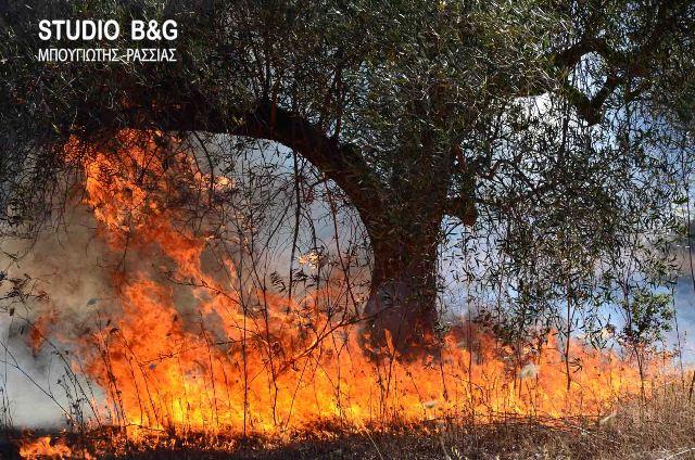 Πολύ υψηλός ο κίνδυνος πυρκαγιάς στις 16 Αυγούστου και για την Αργολίδα
