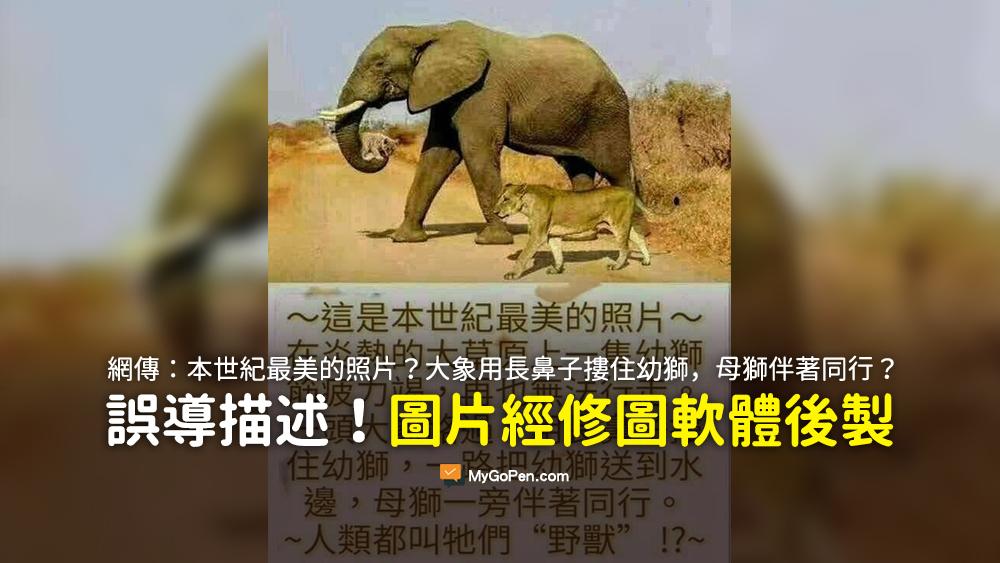 本世紀最美的照片 大象用長鼻子摟住幼獅 母獅一旁伴著同行 謠言 愚人節