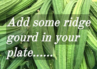 ridge gourd