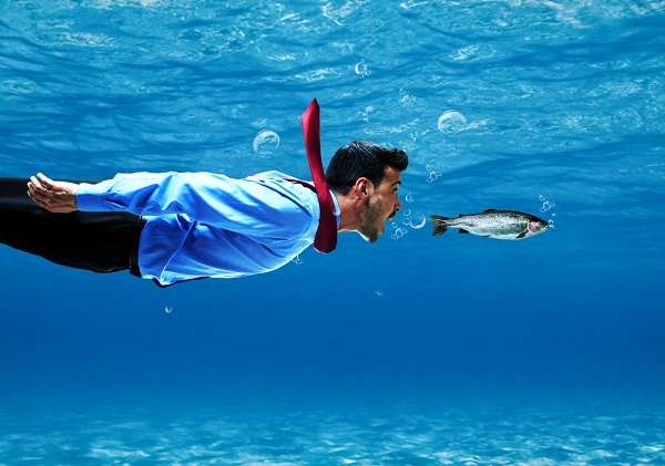 Benefits and Disadvantages of Eating Fish Every Day for Human Health