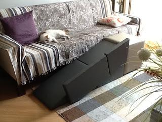 rampa para gato no sofá