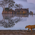 A Week-Long Vacation with Golden Triangle and Ranthambhore