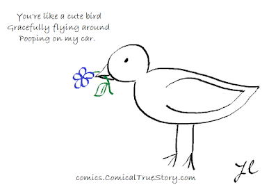 You're like a cute bird - Gracefully flying around - Pooping on my car.