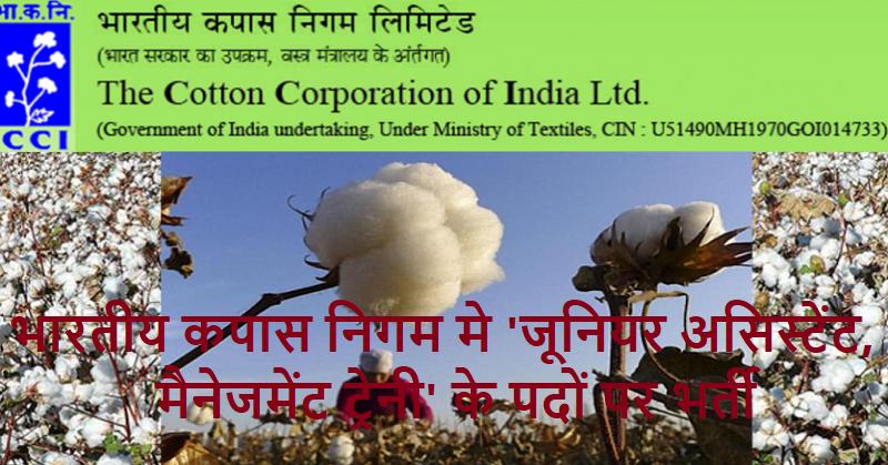 Cotton India jobs 2020