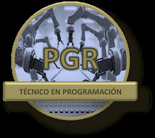 Técnico Programador