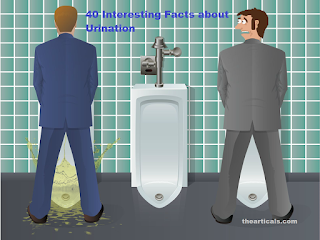 पेशाब के बारे में 40 रोचक तथ्य | 40 Interesting Facts about Urination