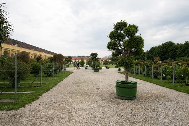 Irrgarten e Orangerie-Castello di Schönbrunn-Vienna
