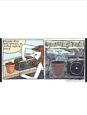 Roślinne suchary