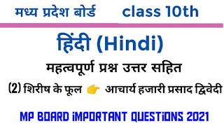hindi important question 2021 class 11 mp board