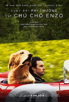 Xem Phim Cuộc Đời Phi Thường Của Chú Chó Enzo
