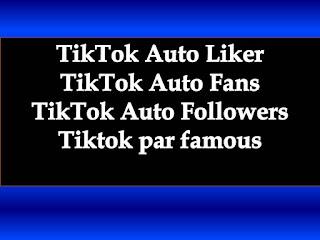 TikTok Auto Liker | TikTok Auto Fans | TikTok Auto Followers