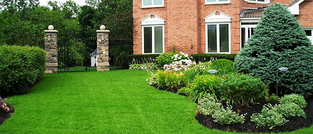 "What to do to find out ""Experience and Quality Artificial Grass Company near me"""