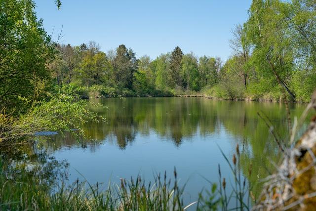 Premiumwanderweg DonAUwald | Etappe 1 von Günzburg nach Offingen 18