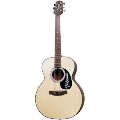 Guitar Takamine D1N