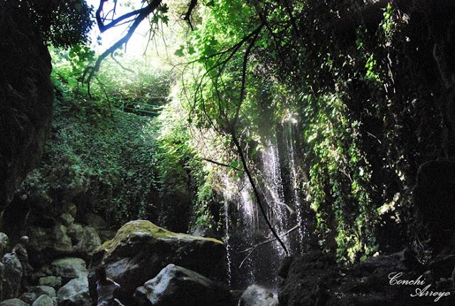 Espectáculo de la naturaleza la Cueva del Agua, en el Rio Cuadros, oasis en el olivar de Jaén.