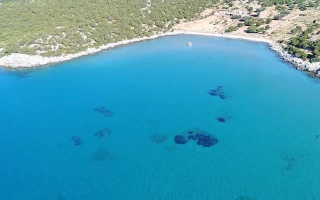 Το πιο δροσερό και εξωτικό… Μαντρί που έχετε δει στην Ελλάδα