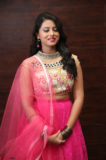 Geethanjali sizzles in Pink at Mixture Potlam Movie Audio Launch 035.JPG