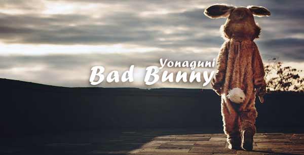 bad bunny yonaguni lyrics