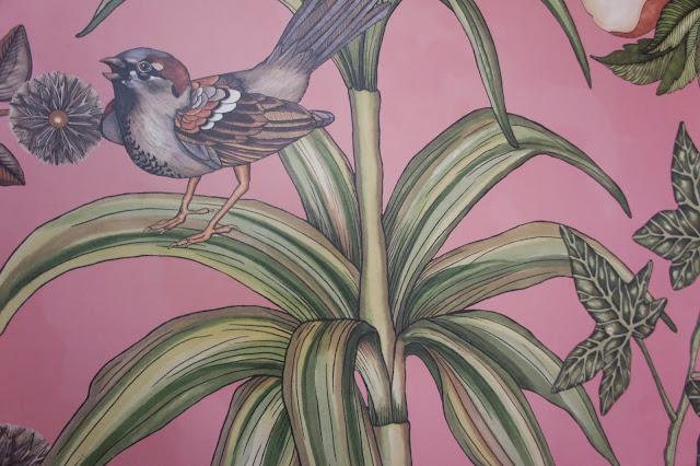 bird wall paper