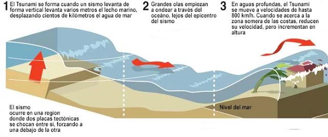 Un Tsunami es una ola o serie de olas en un tren de ondas generadas por el desplazamiento vertical de una columna de agua.