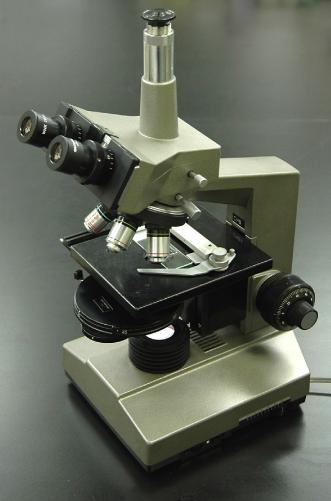المجهر الضوئي ، وهو النوع الشائع في مختبرات الأحياء في المدارس الثانوية والكليات.