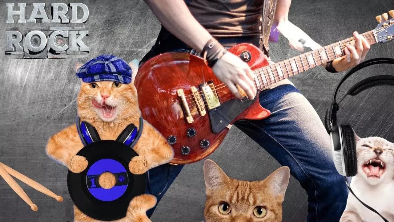 James Heatfield amante de 2 gatos