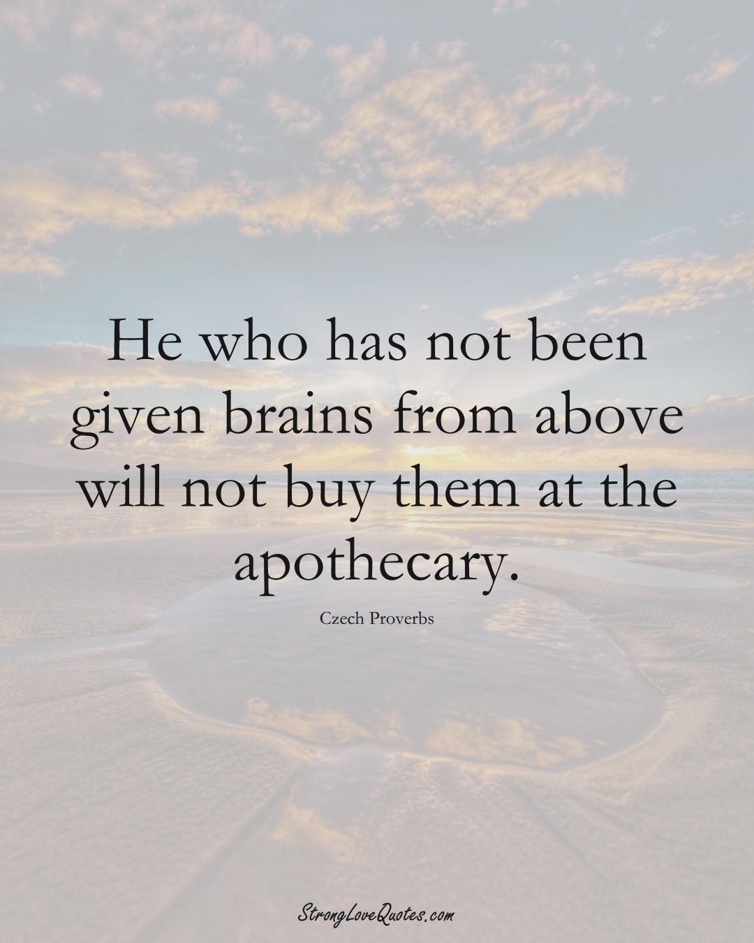 He who has not been given brains from above will not buy them at the apothecary. (Czech Sayings);  #EuropeanSayings