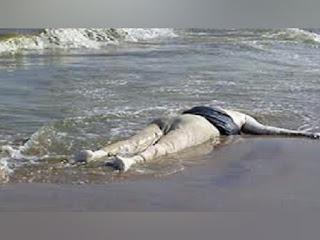 سوسة : العثور على جثة إمرأة  تطفوا فوق سطح البحر.