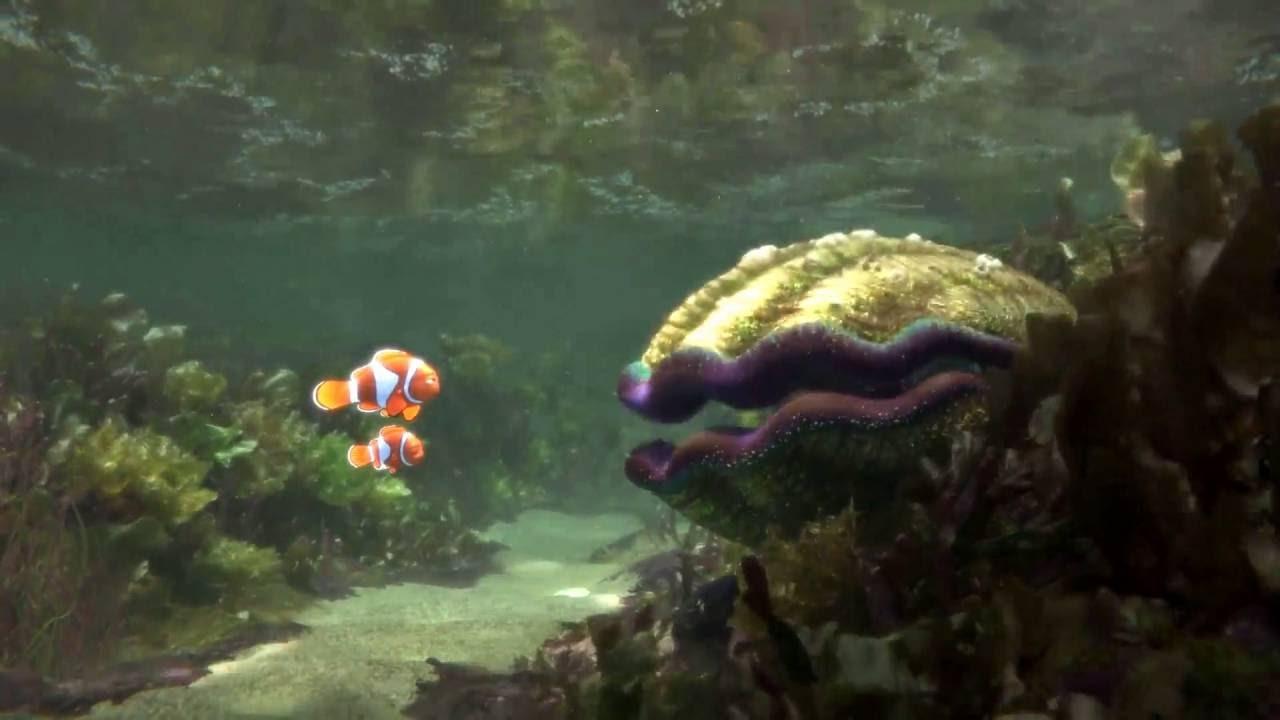 Moderno Uñas Buscando A Nemo Componente - Ideas de Pintar de Uñas ...