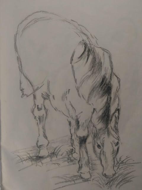charcoal pencil art horse