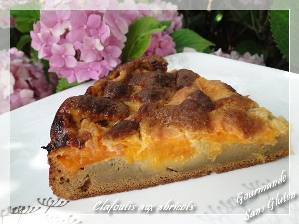 Clafoutis à l'abricot sans lactose, sans gluten