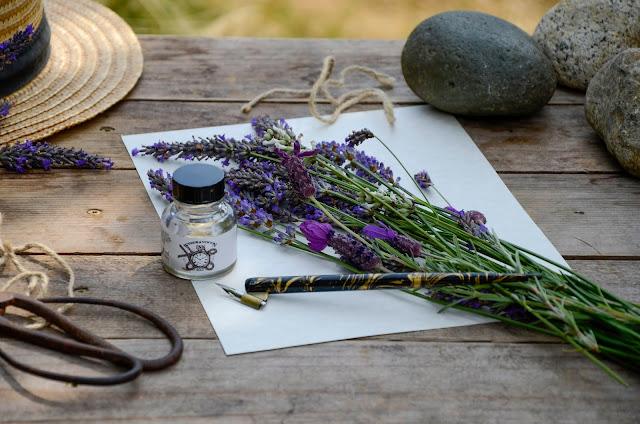A Botanical Lesson at Pelindaba Lavender Farm