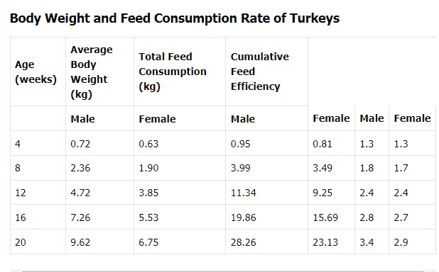 Body Weight and Feed Consumption Rate of Turkeys