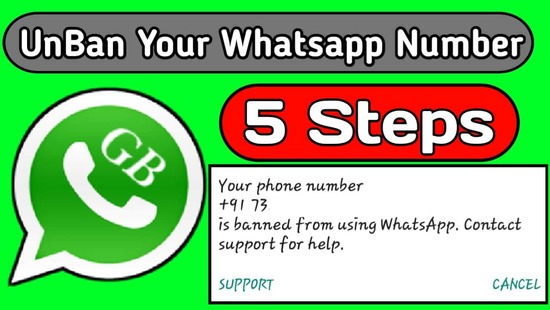 unban banned whatsaap number