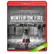 Winter on Fire: Ukraine's Fight For Freedom (2015) WEBRip 720p Audio Ingles 5.1 Subtitulada