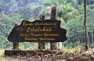 Wisata Hutan Tropis Cikaniki Citalahab Bogor