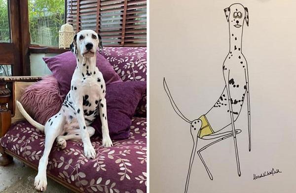 ilustrasi gambar hewan lucu