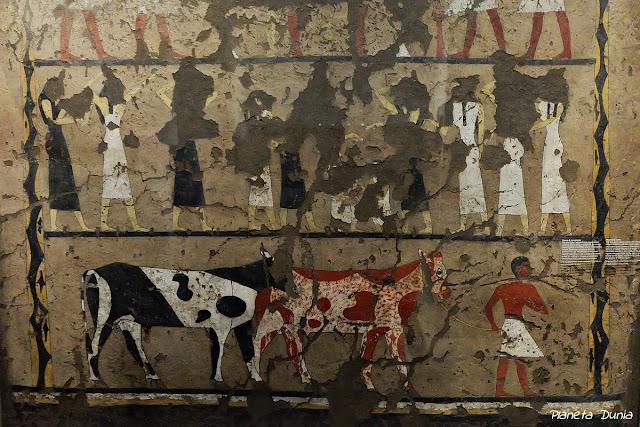 Museo Egipcio