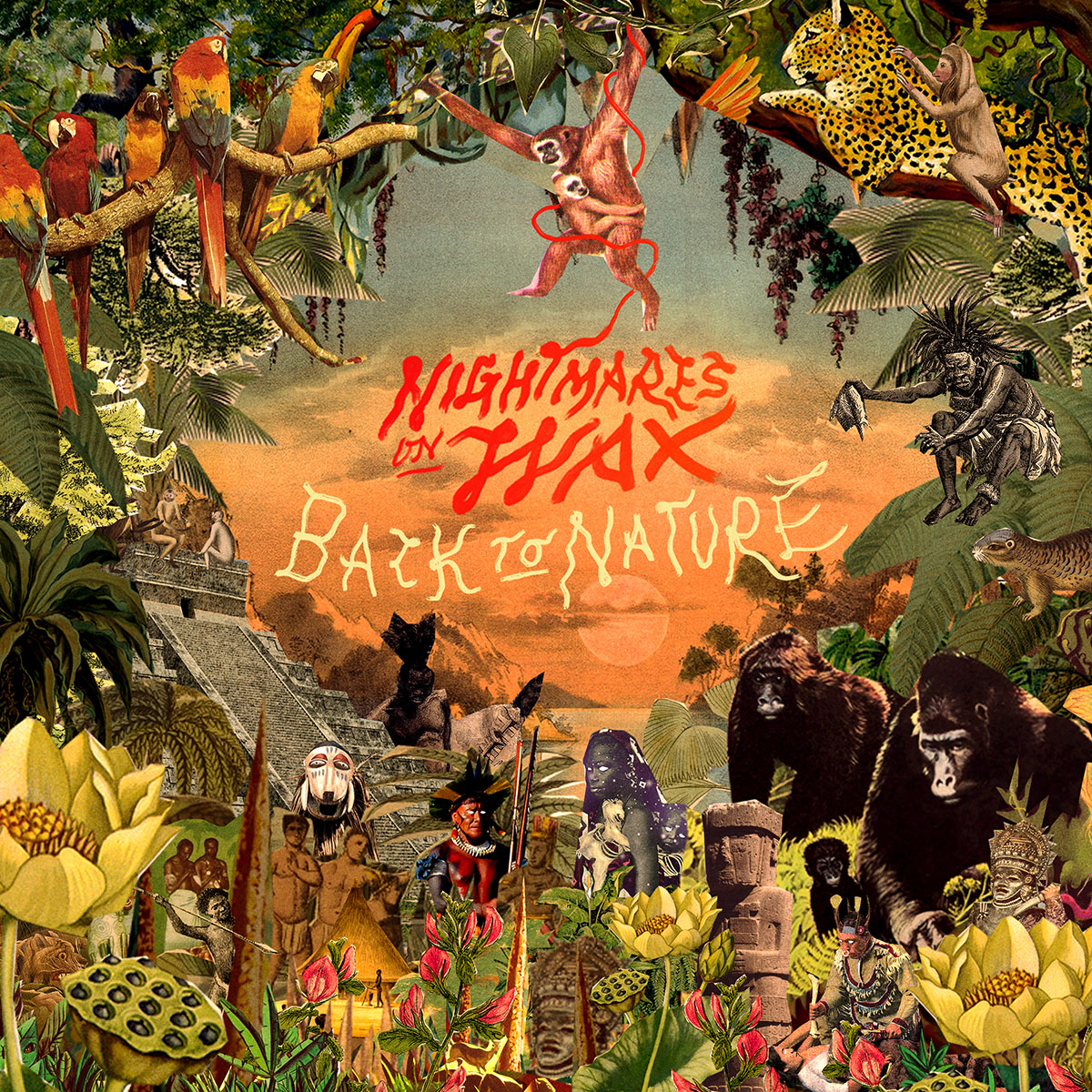 Nightmares on Wax - Back To Nature | SOTD Musikvideo Premiere