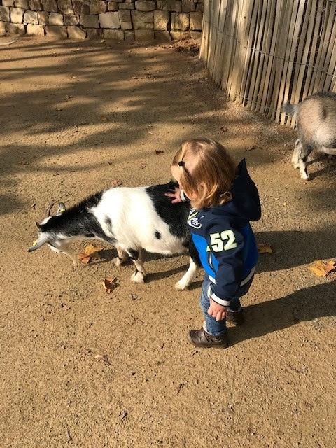 Tjelle mit Ziege