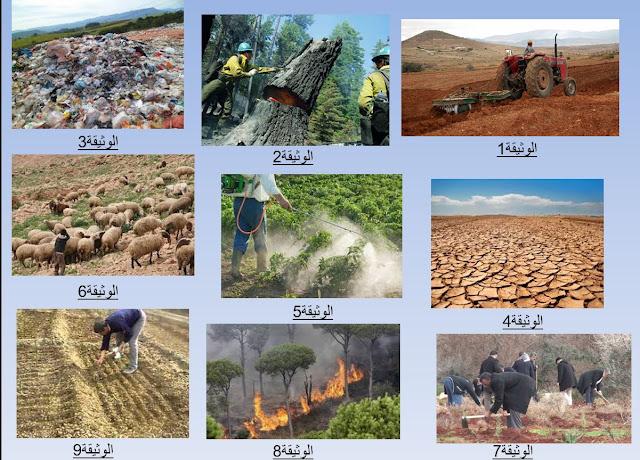 عرض تقديمي لدور الانسان في استقرار النظام البيئي السنة الثانية متوسط علوم طبيعية