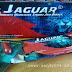 Kapsul Jaguar: Suplemen Tahan Lama